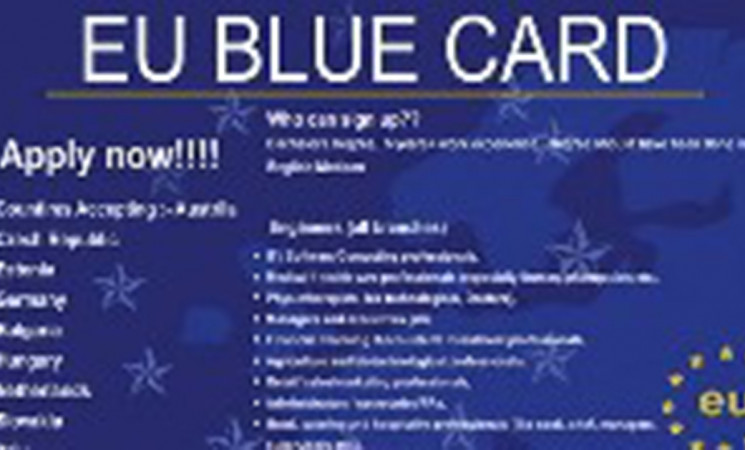 Clune calls for a new and improved EU Blue Card system of migration for the EU