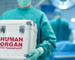 Clune calls for EU action on illegal organ trafficking
