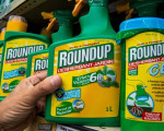 New five-year licence for glyphosate